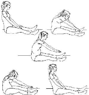 Senam Kegels (Kegels Exercise)